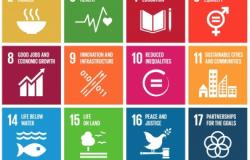 Partnerships Essential for the UN SDGs to Transform Lives
