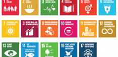 The Future of FDI: Achieving the Sustainable Development Goals 2030 through Impact Investment