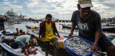 Interlinkages of Culture and Government Policy in Tackling Global Challenges: A story from Indonesian fisheries