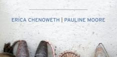 The Politics of Terror by Erica Chenoweth and Pauline Moore.