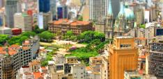 Local Advocacy in a Polarized World: A Perspective from São Paulo