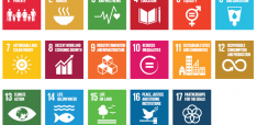 How to Start Interacting with the SDGs