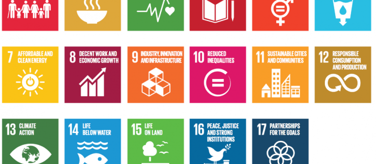 Knowledge and Politics in Setting and Measuring the SDGs: Introduction to Special Issue