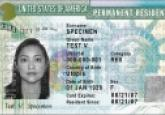 immigration, crime, u visa, American, green card, law, policy, whistleblower